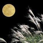 中秋の名月 読み方