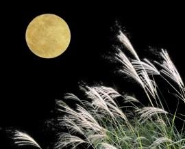 お月見 10月