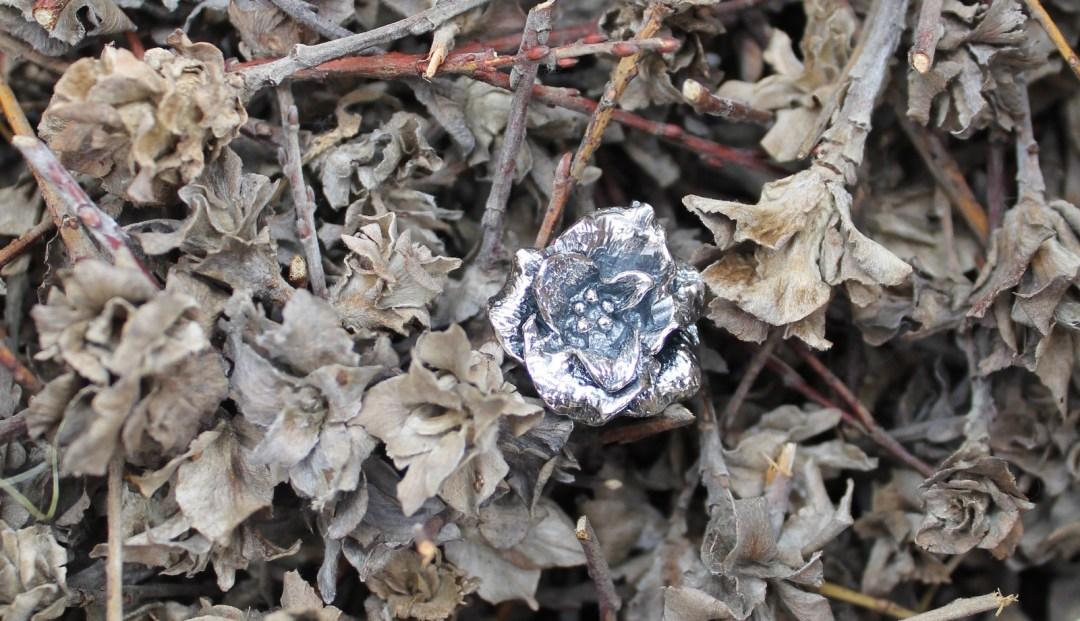 Skagenrosen broche i sølv blandt de naturlige skagenroser.