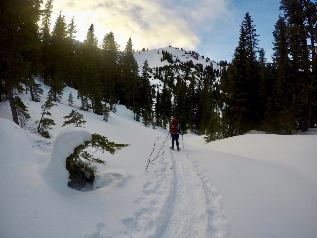 Snowshoeing Skagit County Snowy