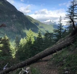 Backpacking in Skagit Blowdown Mountain