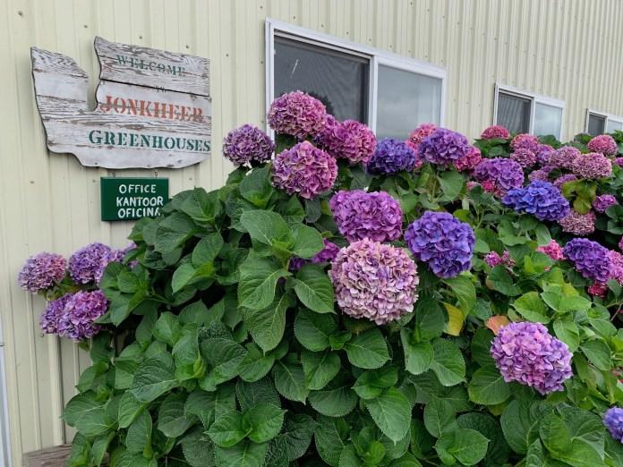 Jonkheer Greenhouses jonkheer-Sign