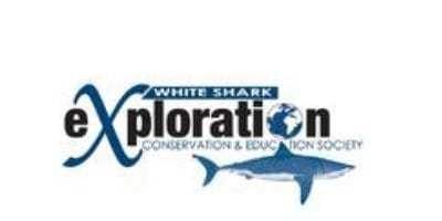 White Shark Conservation