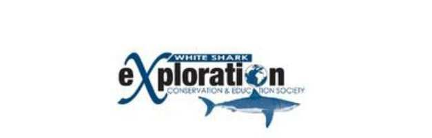 White Shark Conservation