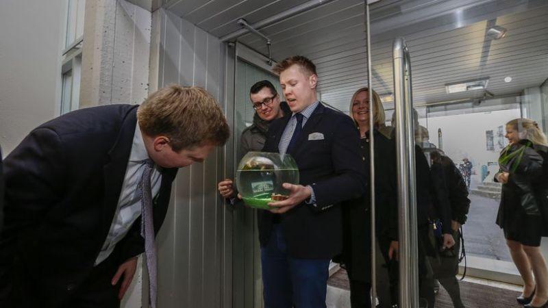 Animalfarm Sigmundar Davíðs