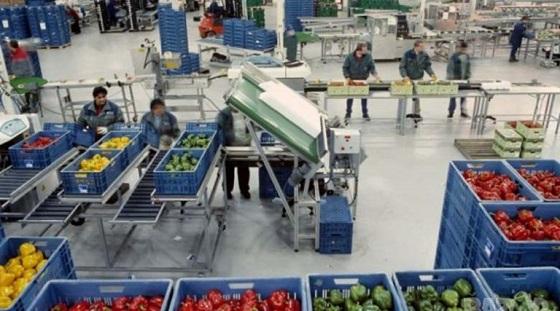 Шок! Българите вече нямат право да работят в Англия