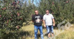 Двама предприемчиви българи наследиха запустяла земя