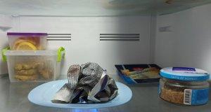 Намокрете вестник с вода и го сложете в хладилника. НИКОЙ не е подозирал че ще се случи това!