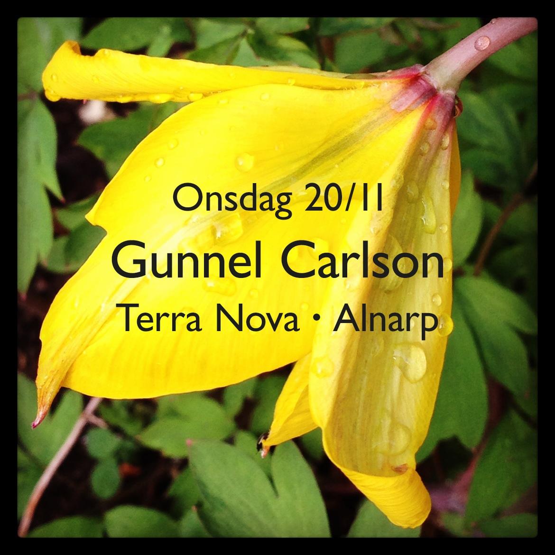 Gunnel Carlson 20 november 2013