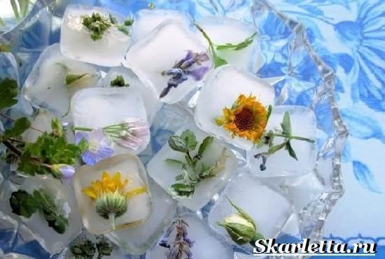 Лед-для-лица-Особенности-польза-и-применение-льда-для-лица-в-домашних-условиях-32