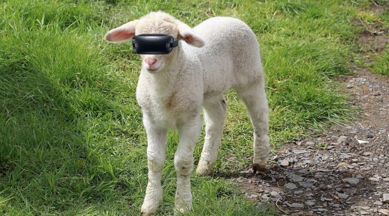 Virtual reality easter