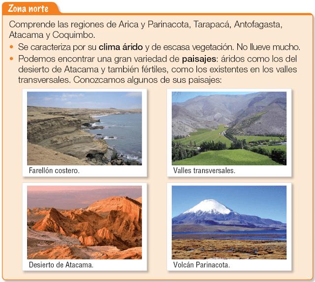 Etnobotanica Del Sur De Los Andes De La Primera Region De Chile