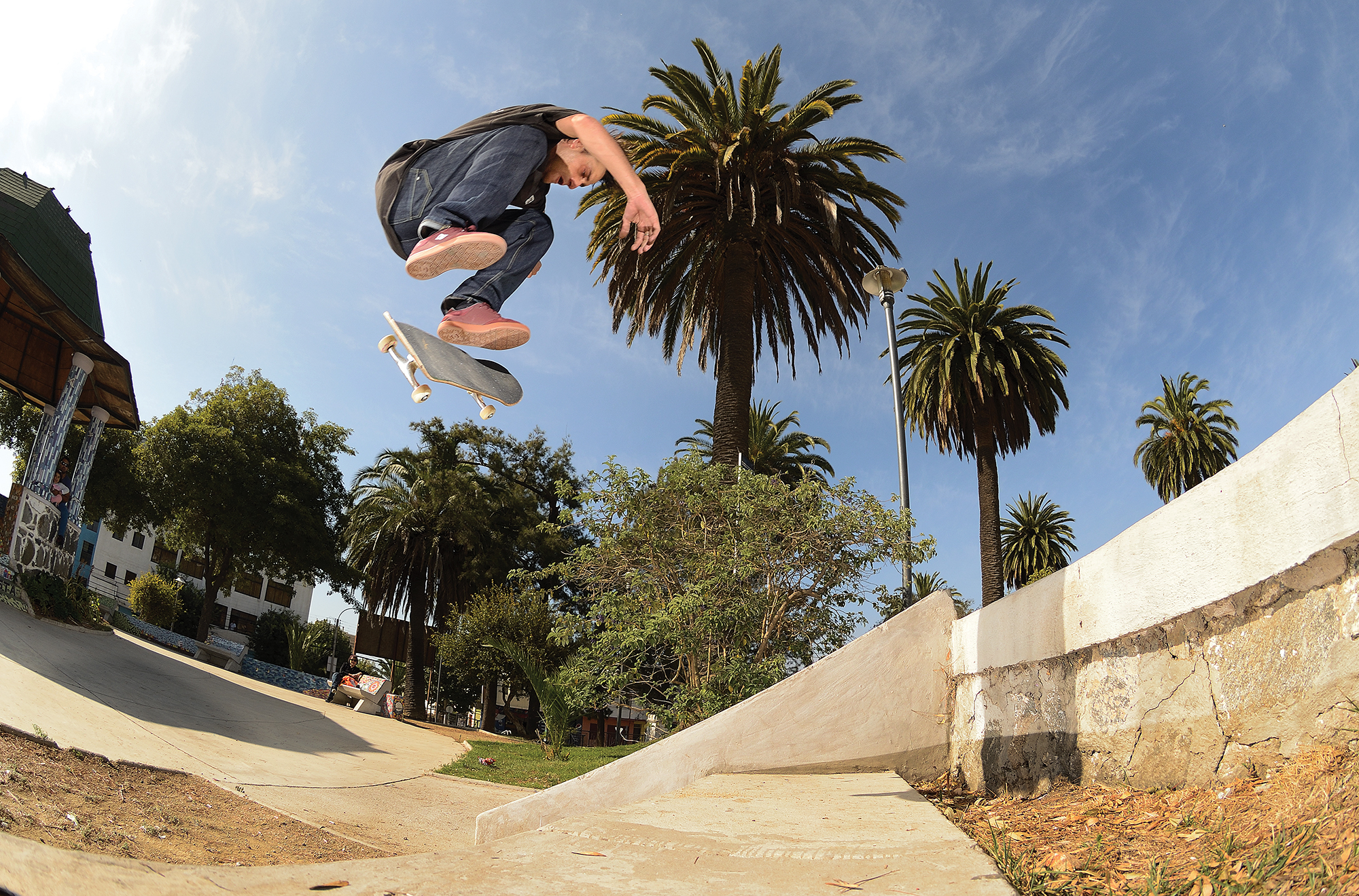 Carlos Iqui_Nollie Backside Flip