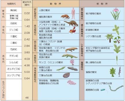 地質時代と生物の進化