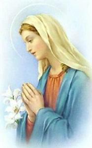 聖母マリア百合の花