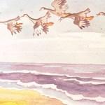 Стая Акки летела над морем.
