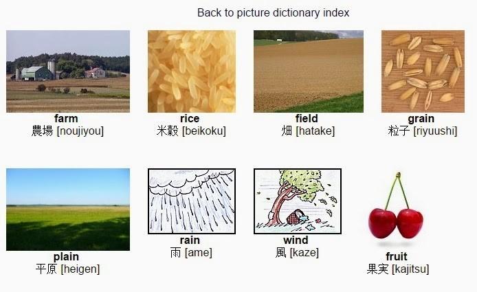 Dicionário de figuras online