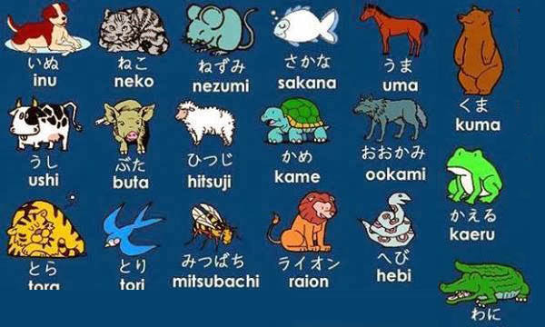 Động vật Nhật Bản - nghi ngờ [動物]