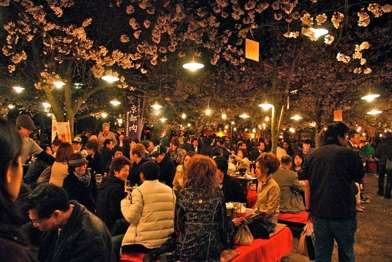 Hanami (Cherry Blossom Viewing)