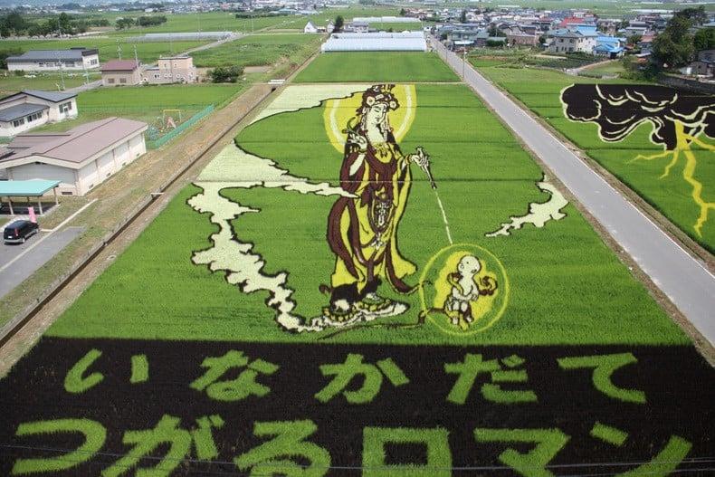 Tipos de Artes japonesas - tanbo arroz arte 7