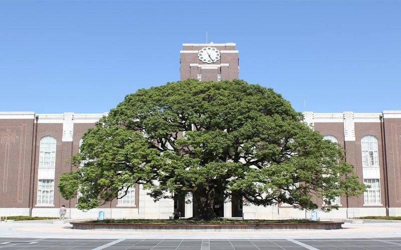 kyotodaigaku