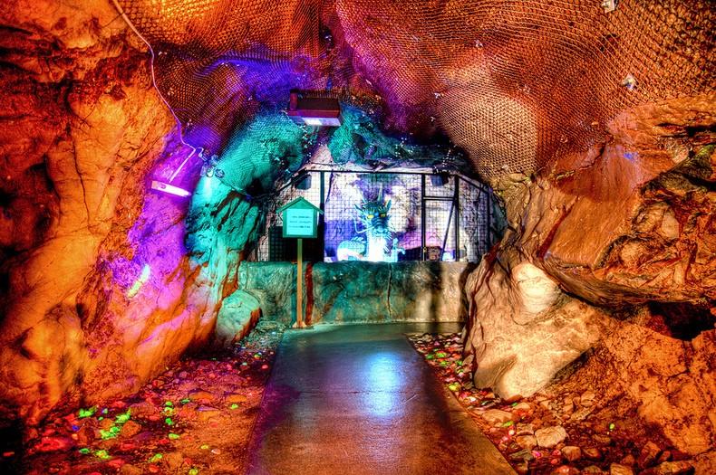 Conheça a ilha de Enoshima - dragon in the cave 1406 1