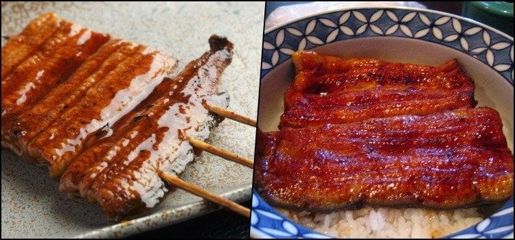 Os 10 Tipos de peixes mais consumidos no Japão - unagi2 9