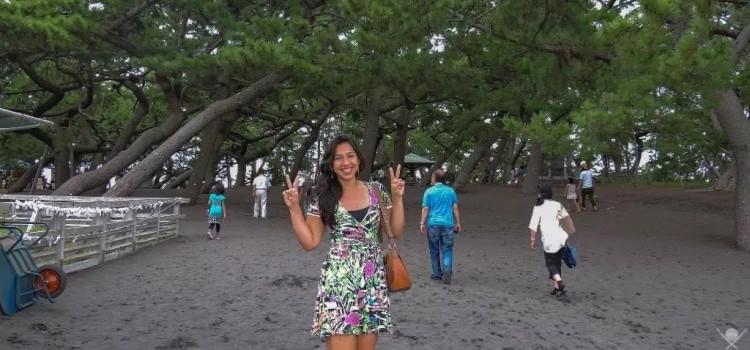 Next Stop Japão - Planejando sua viagem ao Japão - marina tsuge 1