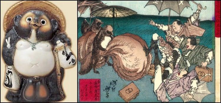 Tanuki - O cão guaxinim japonês