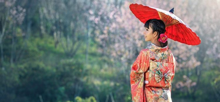 Shinrin Yoku - truyền thống tắm rừng japanese