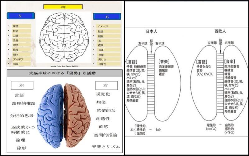 ブラジルと日本の文化的差異の起源 - Eduardo Toda - brain japanese 3