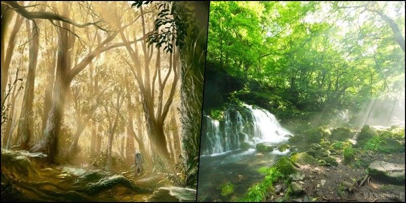 Shinrin Yoku - Tradição japonesa do banho de floresta