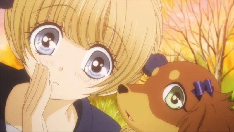 Animes com animais, cachorros e gatos - big chocotan02 3