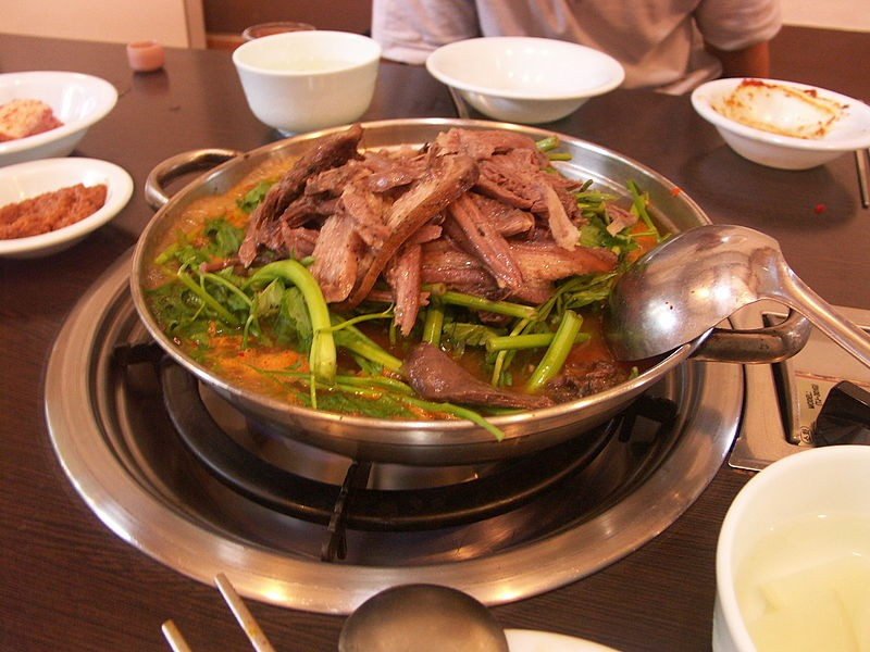 Consumo da carne de cachorro - carne de cachorro