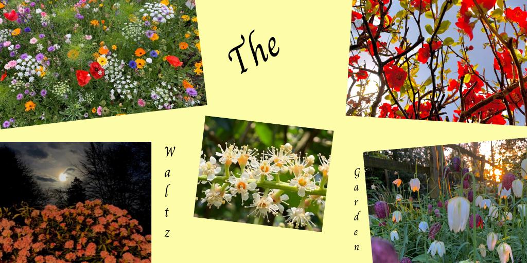 The Waltz Garden collage
