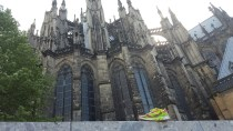 Skechers GOrun at the Cologne Cathedral in Cologne, Germany
