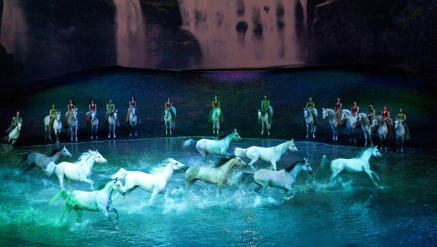 Cavalia's Odysseo a flawless spectacle: Review