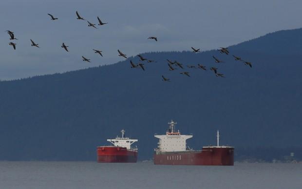 Canada posts third straight monthly trade surplus