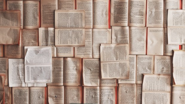 Eight short reads to look into this week