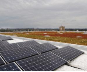 Building a better tomorrow: New green plan