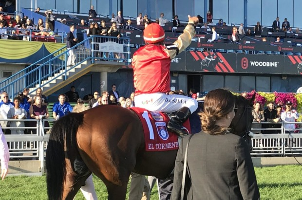 2019 Ricoh Woodbine Mile won by longshot El Tormenta