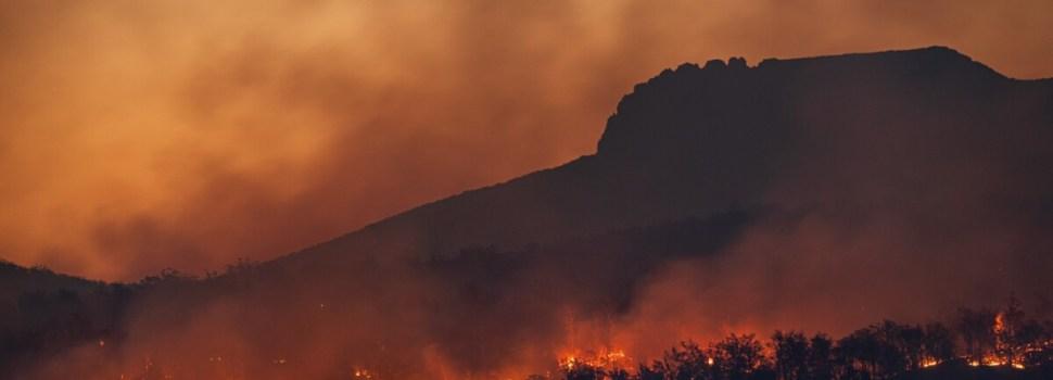 Brazilian Amazon under threat during COVID