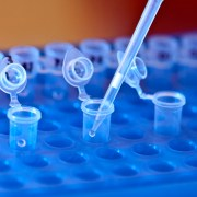 Cell and gene therapy promises new medical breakthrough