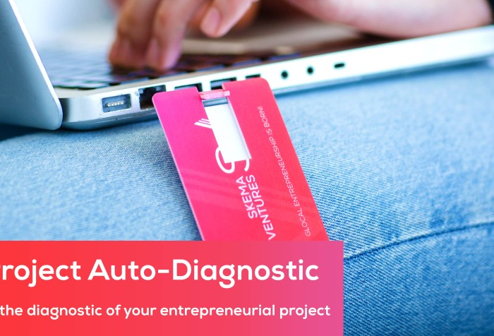 SKEMA Ventures Auto-diagnostic Tool