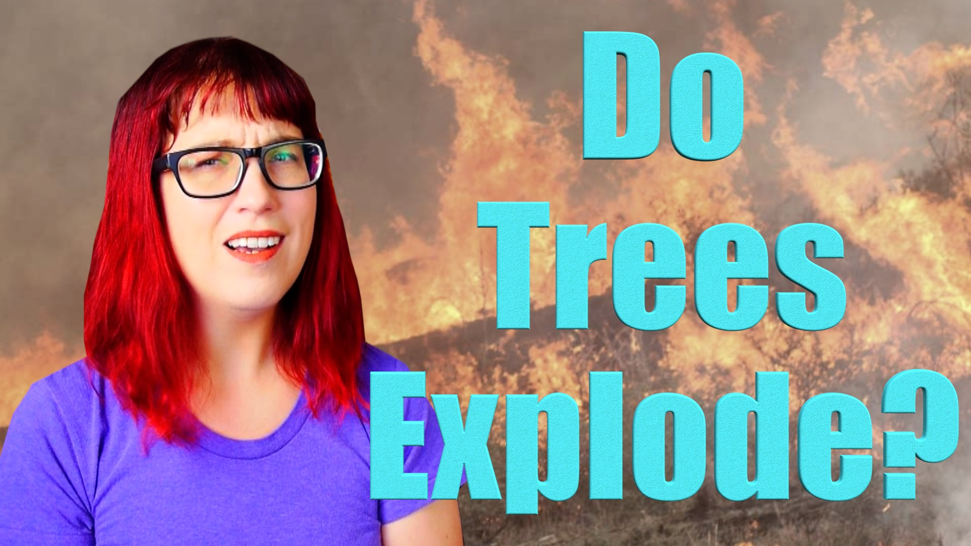 Trump Says Trees Can Explode. He's Not Wrong!