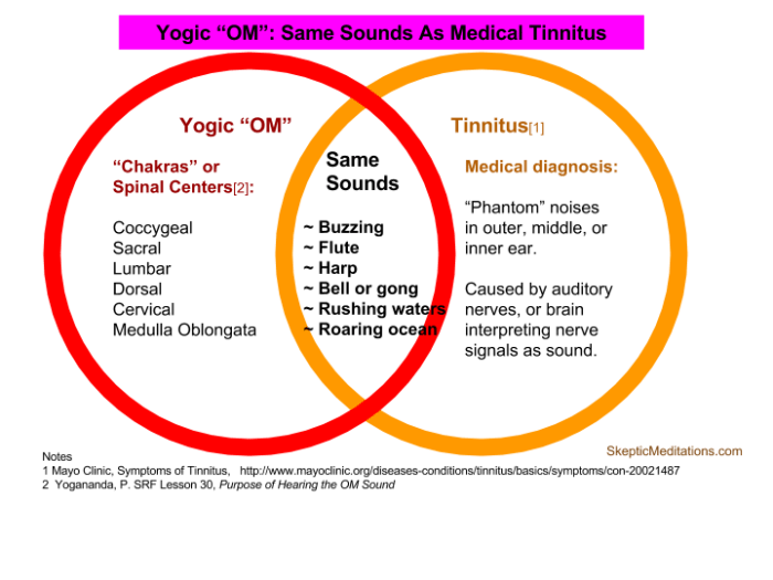 OM: Sound of Spirit OR of Tinnitus? | Skeptic Meditations