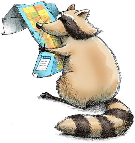 raccoon-map-color.jpg