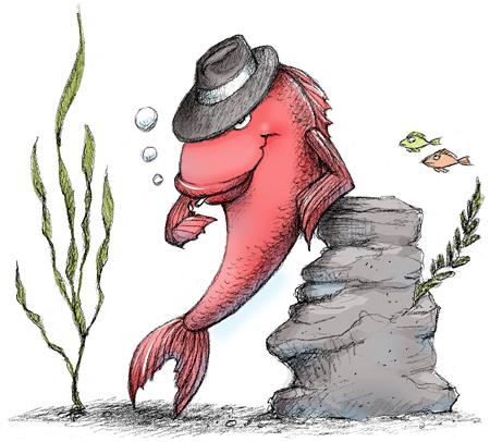 red-herring_color.jpg