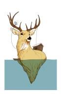 deer lakeR8