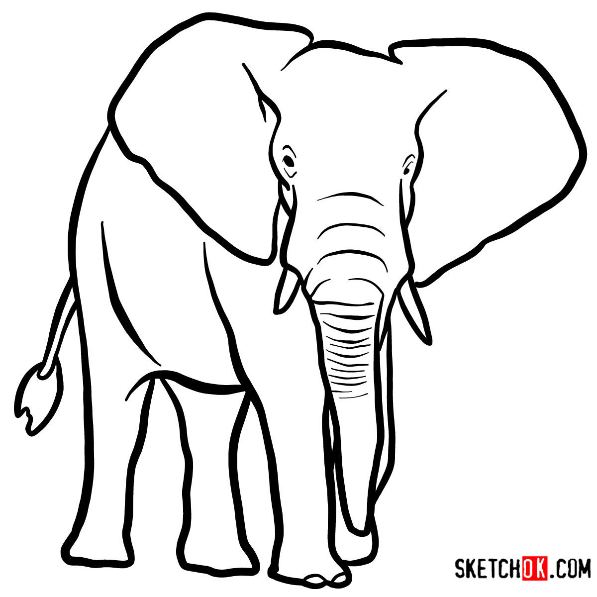 How To Draw An Elephant Front View Wild Animals Sketchok Step By Step Drawing Tutorials